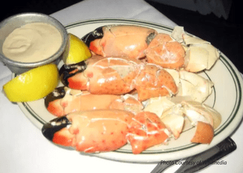 Get to Know the Florida Stone Crab BLVD SArasota