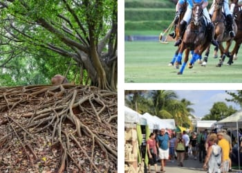 February Events You Won't Want To Miss in Sarasota BLVD SArasota